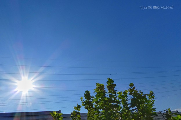 Photos: 貴重な秋晴れin quick[9.19] days~autumn sunshine bluesky太陽青空緑の旅~髪切り行って笑顔になれチケット購入(28きょう貴重な秋晴れ明日から台風)北海道旅行特集