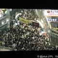 もはやハロウィンではない…主催者もない無法地帯に群がり血塗って露出し宛もなく歩く若者日本の未来。キモいダサい怖い猿たち…ストレス満載パワーを他へ使って、本当の血の痛みを死者を知ってほしい(NHK空撮)