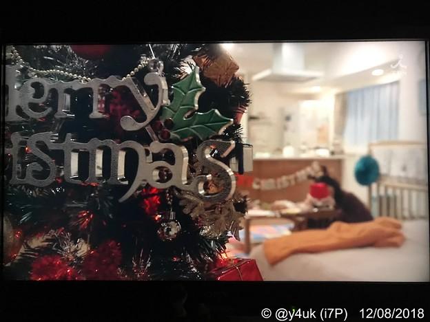 """9話:クリスマスツリー越しから覗く様にカメラはパンし映す飾り家族を経験する一時の3人の小さな幸せ~過ぎゆく季節は早すぎて~(12.14Xmasもぅあと10日…(;゜0゜)""""大恋愛""""はどこにサンタは空に"""