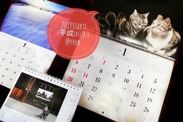 2019Start!平成最後の1月開始!今年も岩合光昭にゃんこカレンダーx2と養命酒信州です!本年もよろしくお願いします。優しく温かく笑え穏やか過酷人少なく平和に出逢え体調悪化なく青空の猫たちの様に。
