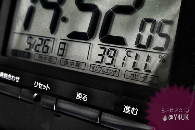 """39.1℃(;゜0゜)5月史上初""""酷暑""""殺人猛暑~慣れていない身体に死ぬ温度…頭痛朦朧瞳チカチカ光化学スモッグ…湿度低いのが救いでも家燃える熱(ローキー[B&Wedit]/マクロ/45mm:TZ85)"""