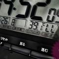 """Photos: 39.1℃(;゜0゜)5月史上初""""酷暑""""殺人猛暑~慣れていない身体に死ぬ温度…頭痛朦朧瞳チカチカ光化学スモッグ…湿度低いのが救いでも家燃える熱(ローキー[B&Wedit]/マクロ/45mm:TZ85)"""