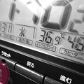 """36.9℃48%amから24h Hotday&Night.殺人猛暑、毎日猛暑…amから深夜も30℃驚愕の温度湿度(~_~;)毎日汗だくで撮影と疲労(クリエイティブ""""ラフ・モノクロ""""/マクロ:TZ85)"""
