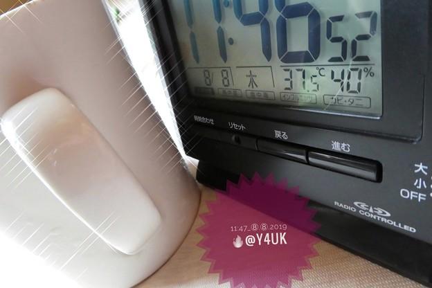 """37.5℃40%am8.8の日#世界猫の日~毎日amから酷暑…殺人猛暑…水分補給にもコップこれは12年くらい愛用。取っ手が必要。クロスで愛が光った(クリエイティブモード""""クロスフィルター"""":TZ85)"""