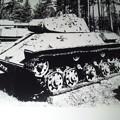 Photos: 間違いついでのT-50軽戦車