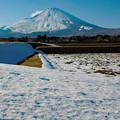 写真: 里雪の季節
