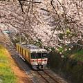 写真: 春陽気に誘われて