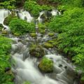 写真: 名水