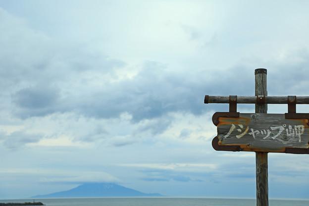 写真: 野寒布岬