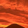 写真: 夕焼け富士