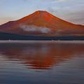 写真: 赤富士の朝 全景