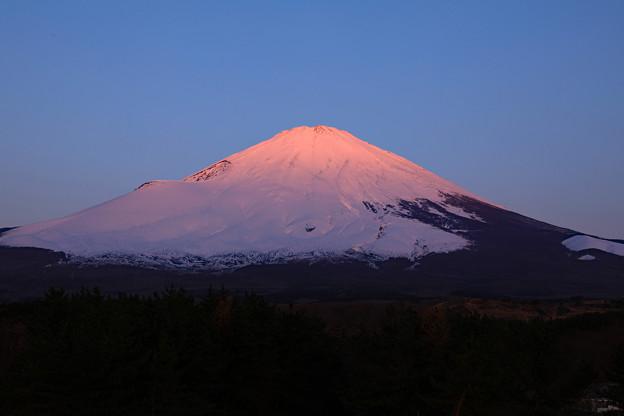 Photos: 春雪の朝