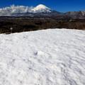 Photos: 雪原の向こうに