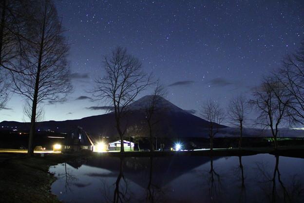 写真: 静寂の星たち