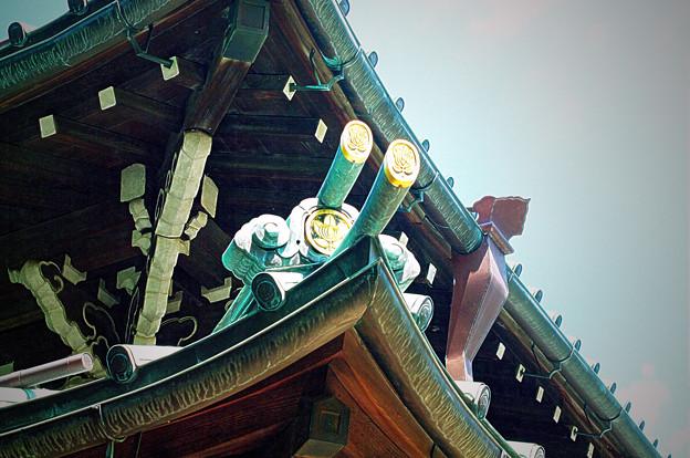 Photos: 豪徳寺_井伊家家門軒瓦