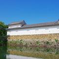 Photos: 彦根城_二の丸佐和口多門櫓
