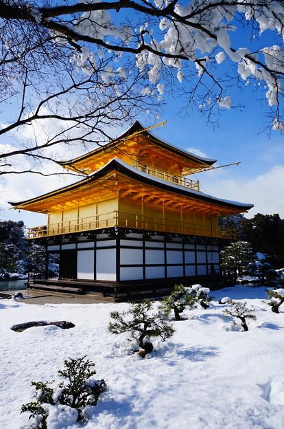 京都-金閣寺雪過天晴