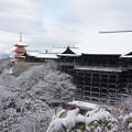 写真: 京都-清水寺