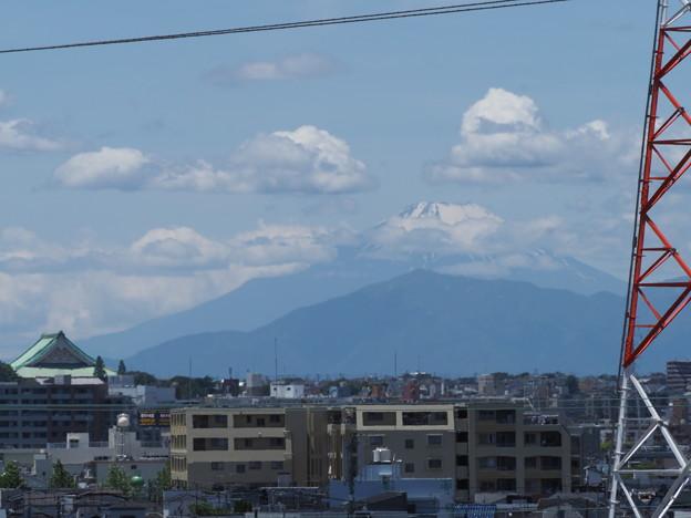 店の屋上から見えた富士山