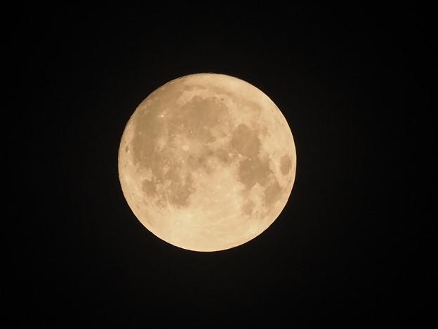 色味を変えた中秋の名月