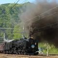 写真: P1080351