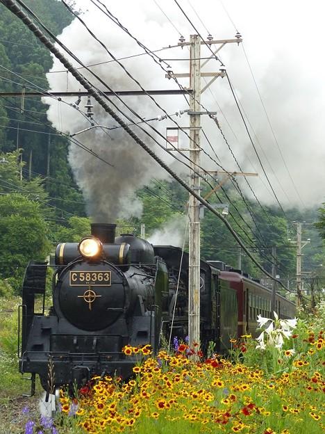 P1060029