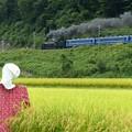 写真: P1090057