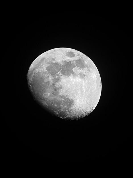 写真: 月齢 11.0  180328