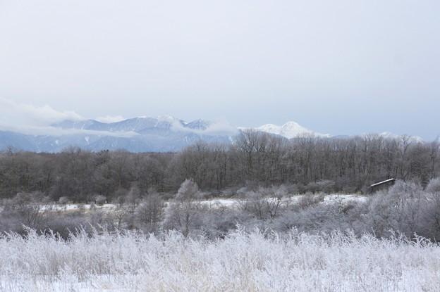 霧氷の山 - 蔵出し