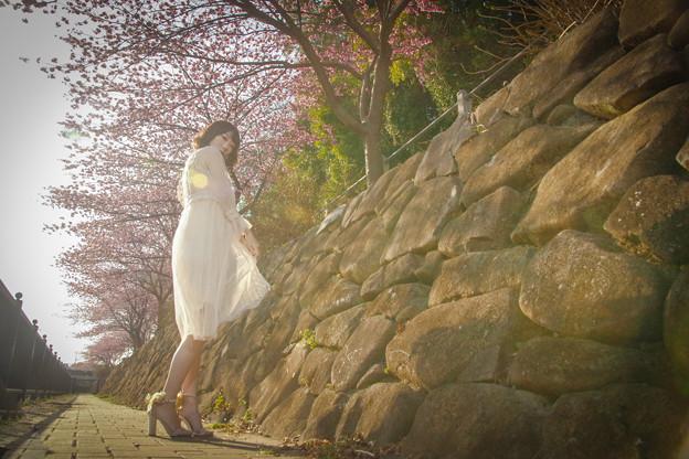 桜咲く頃に…