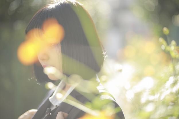 Photos: 秘密