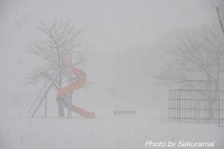 吹雪の公園