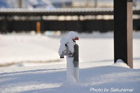 雪の帽子の蛇口