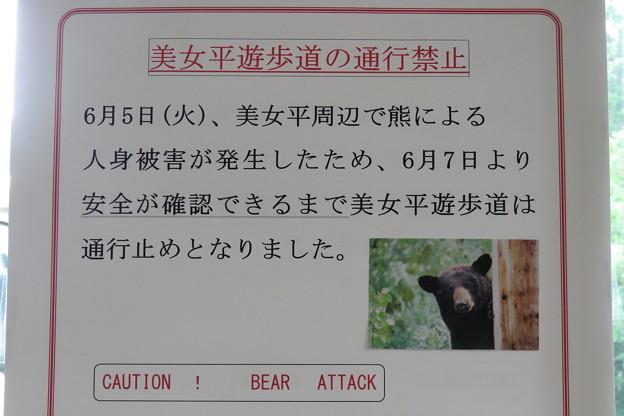Photos: 6.熊出現(美女平)IMG_5831