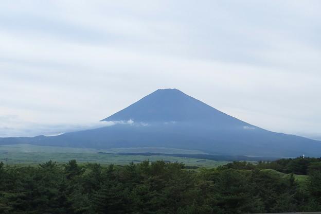 Photos: 1.新東名からの富士山 IMG_4696 by ふうさん