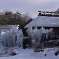 写真: 西湖雪まつり