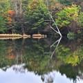 写真: 矢板の秋