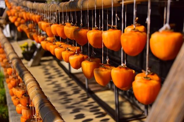 秋の風物詩~枯露柿