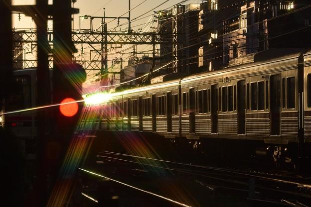 冬~夕陽を浴びて・01