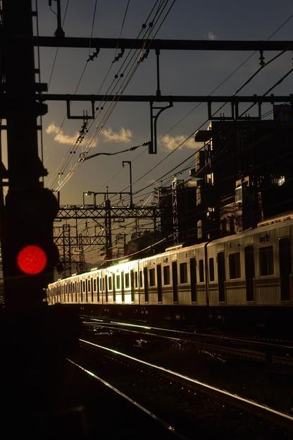 冬~夕陽を浴びて・02