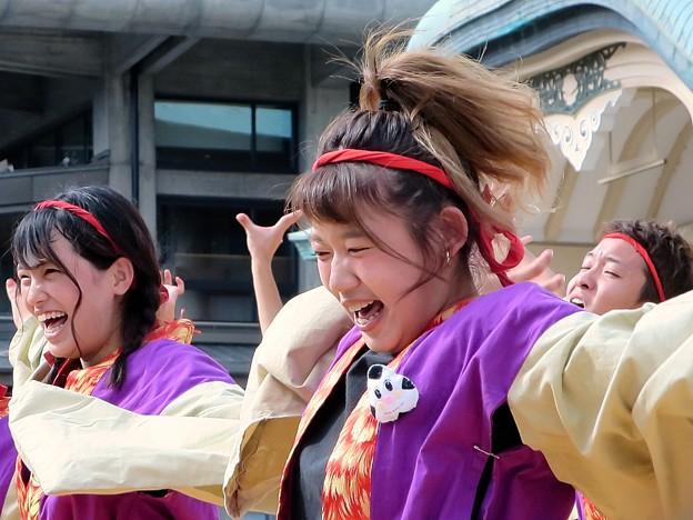 佛教大学よさこいサークル紫踊屋さん