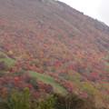 写真: 那須岳紅葉