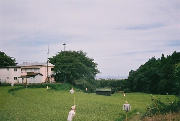 Photos: 農村
