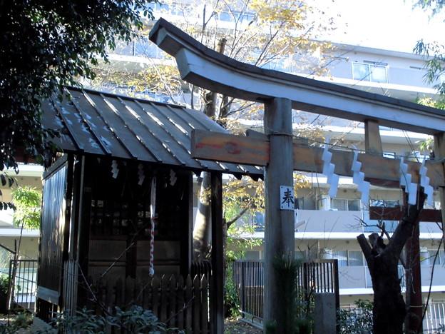 都電荒川線_早稲田駅界隈:水稲荷神社-15富塚古墳_祠群c