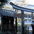 Photos: 都電荒川線_早稲田駅界隈:水稲荷神社-15富塚古墳_祠群c
