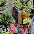 写真: metropolis_北品川界隈-01豊川稲荷(陀祀尼真天)_稲荷堂