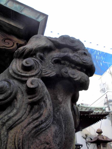 品川駅高輪口界隈_高山(稲荷)神社-06狛犬b(吽)