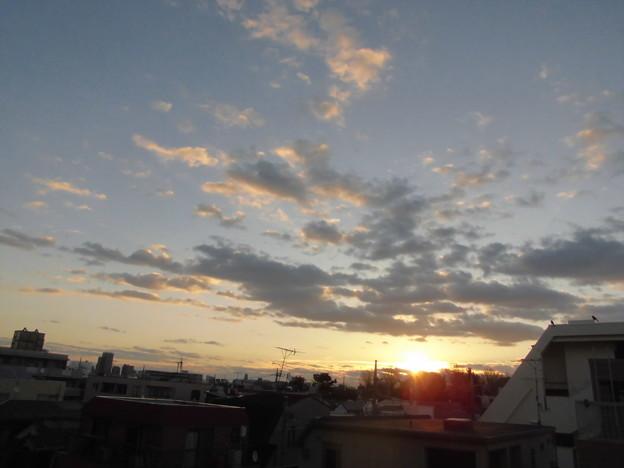Photos: sora(カラス)_2015.12.17.-03b