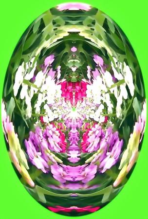 花のしずく_flower maze