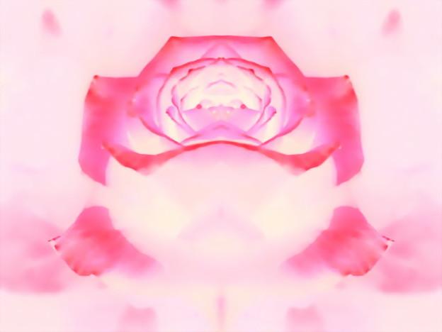 花の揺りかご-01